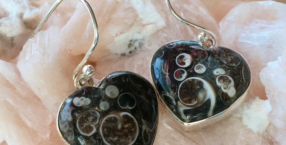 Turtella Jasper 925 Sterling Silver Earrings Jewelry