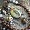 Thumbnail: Kali | Turquoise Apatite Iolite Amazonite Garnet Quartz Skull PrayerBoxNecklace