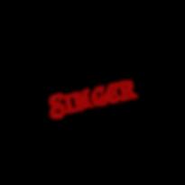 Logo for the Soulful Singer - musiker, sanger, guitaist