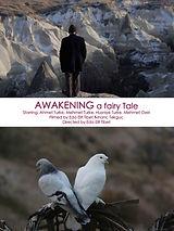 Awakening poster.jpg
