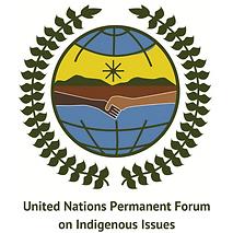 thumb-UNPFII-logo.png