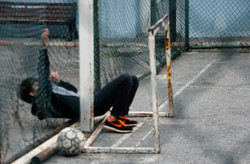 6.crossing the fence to play