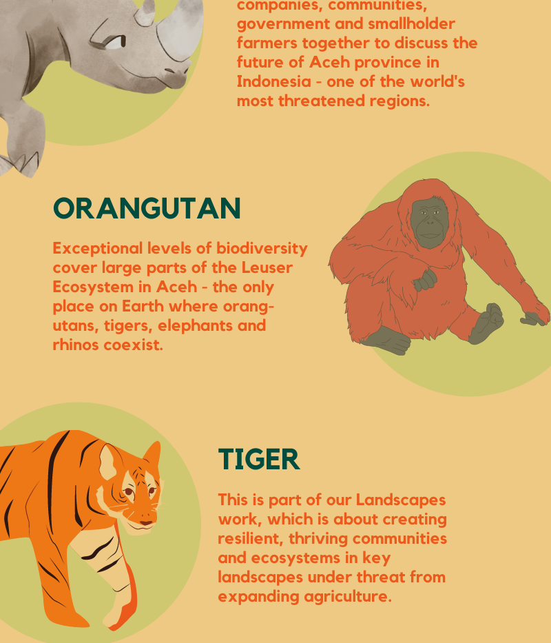 Most threatened_ Infographics.png