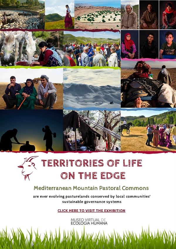 Territories of Life on the Edge