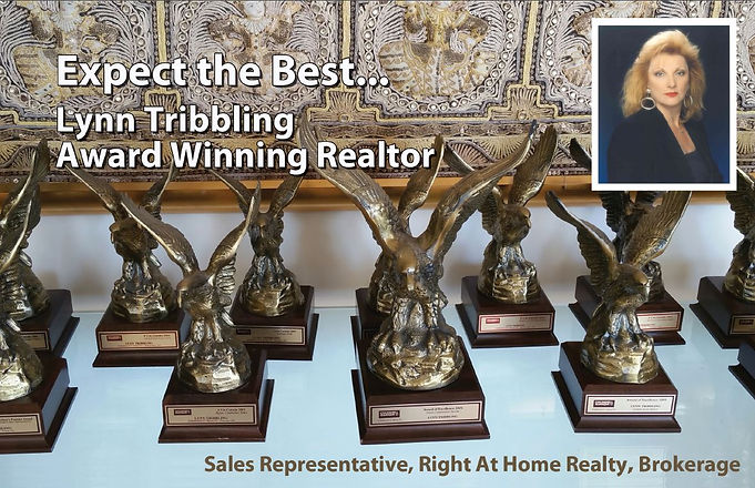 Lynn Tribbling Award Winning Realtor Awards