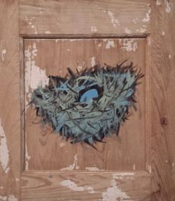 Safety Nest