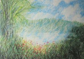 Lápiz de colores sobre papel, 2000's/ Color pencil on paper, 2000's.