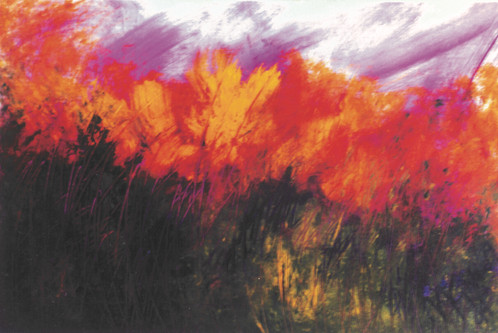 Óleo sobre tela, 2000's/ Oil on canvas, 2000's.