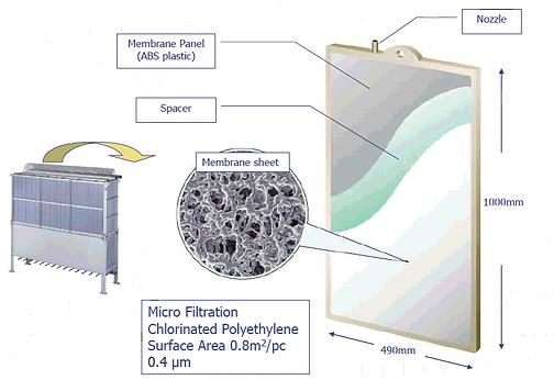 membrane(2).png