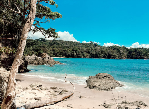 Top 10 Reasons to Visit Manuel Antonio, Costa Rica