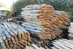ChestNut logs.png