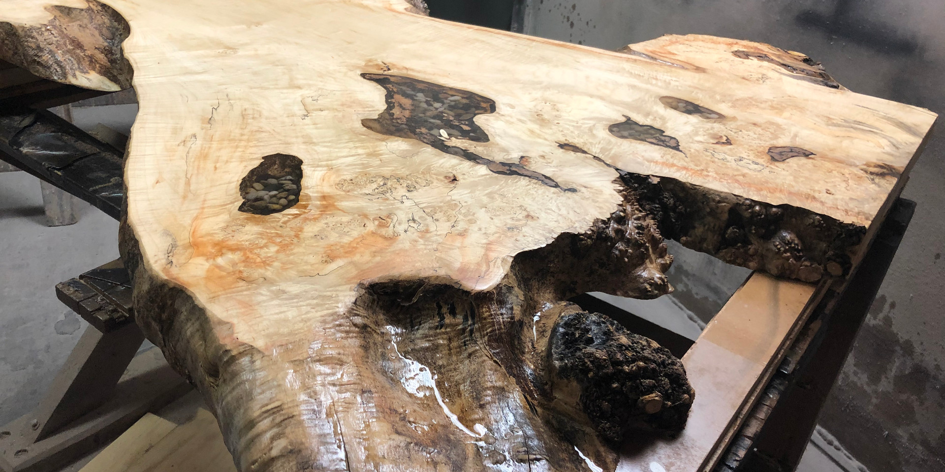 23 - Curly Maple Spalted Maple Coffee Table