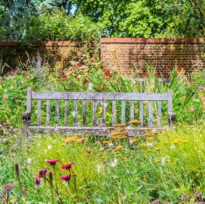 Goed voor je tuin, die voorjaars-storm!