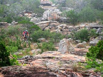 Mountain Biker.jpg