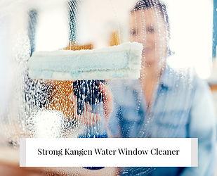 greener-home-window-cleaner-w600.jpg