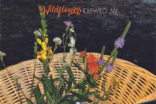 Wildflowers Postcard