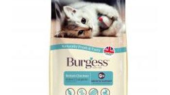 Burgess Kitten 1.5k