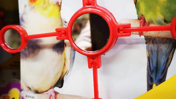 Budgie moving mirror toy