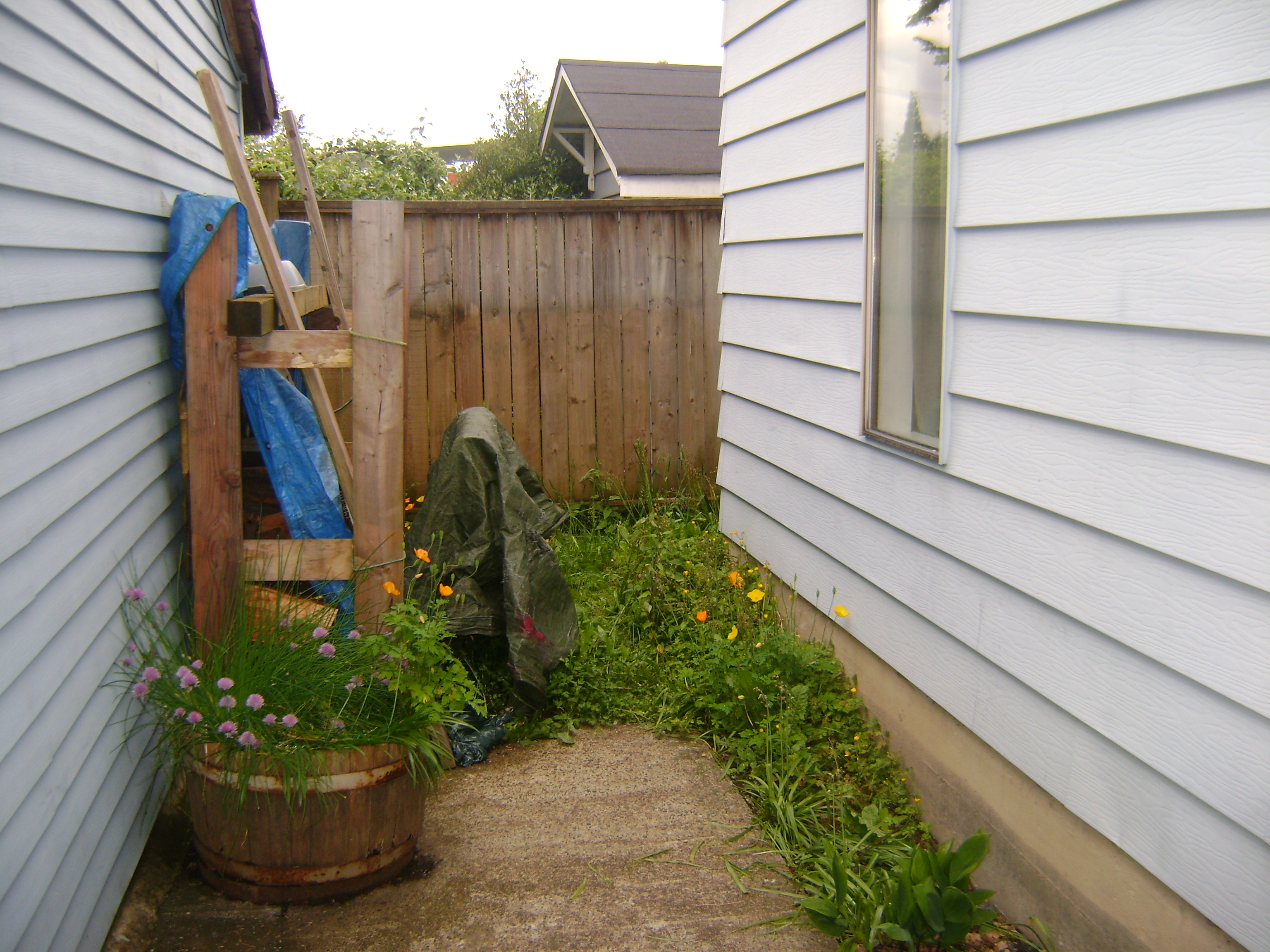 Home Repairs -Yard Before