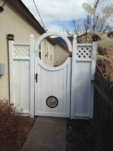 New custom gate complete with dog window