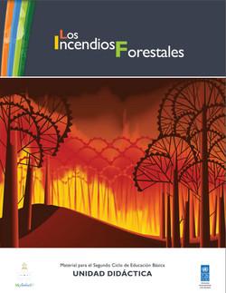 Los Incendios Forestal