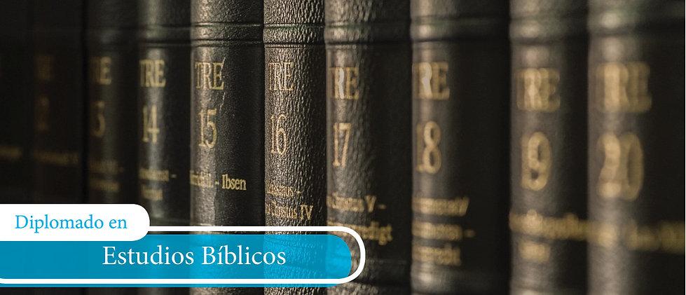 Diplomado Teologia Sist.jpg