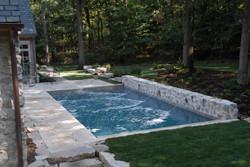 gunite inground pool natural setting