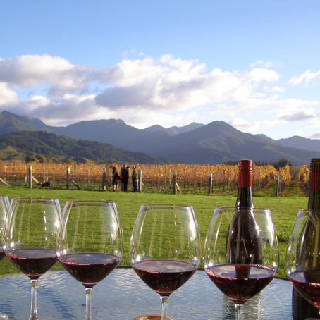 Bird Wines rewards Liquor King top sellers with a trip to Marlborough