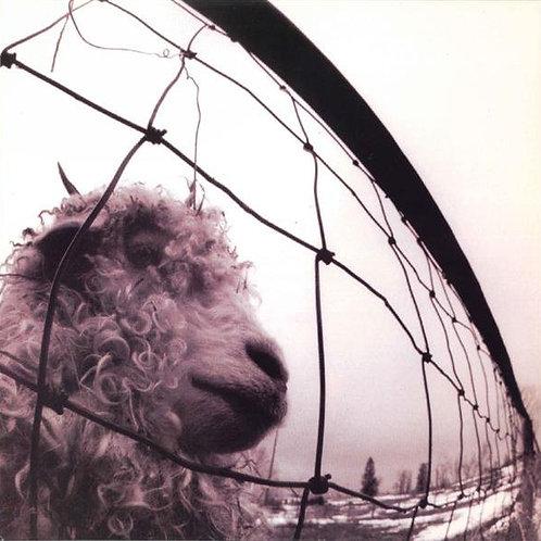 Pearl Jam – Vs