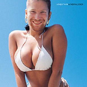 Aphex Twins - Windowlicker