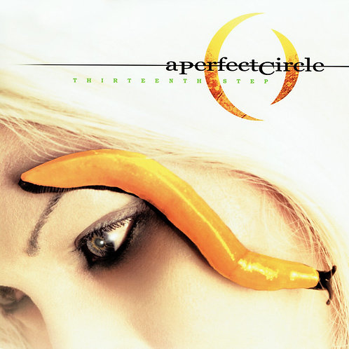 A Perfect Circle ‎Thirteenth Step