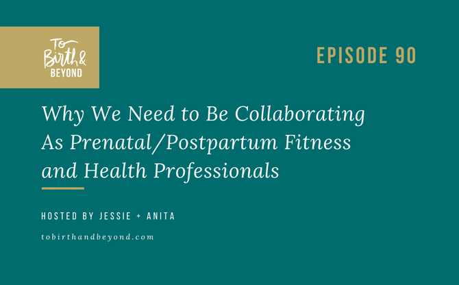 [Podcast] - Why We Need to Be Collaborating As Prenatal/Postpartum Fitness and Health Professionals