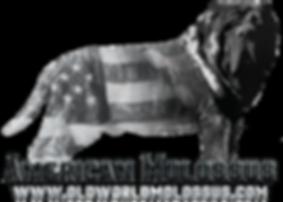 American Molossus logo.png