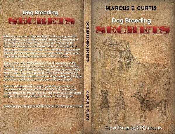 Book cover main.jpg