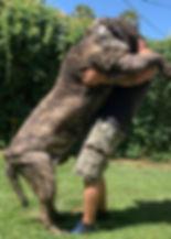 Sasquatch staning 2 years 7-12-2019 pic