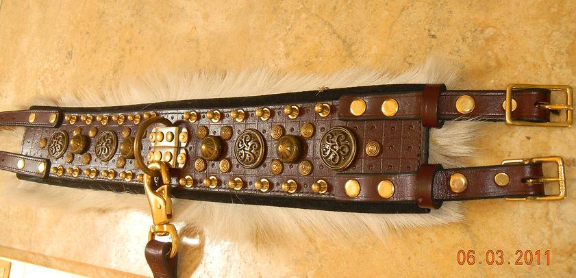 Bandito and Collar 002.JPG