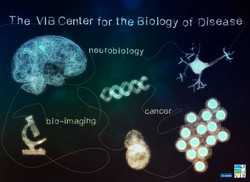 Wall poster for VIB Center