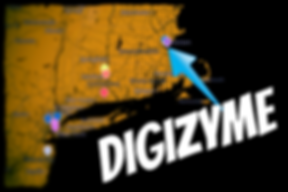 Digizyme