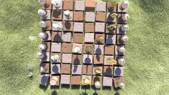 I've grown my own organic chess set