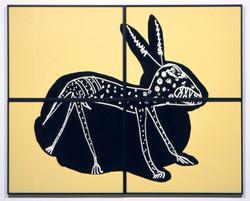 X-Ray Bunny