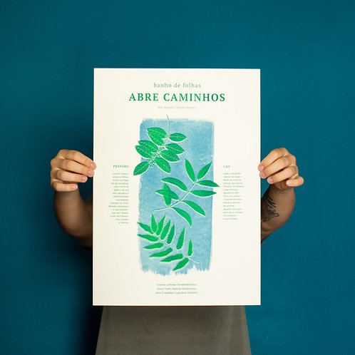 Poster A3 Abre Caminhos | MIOLO