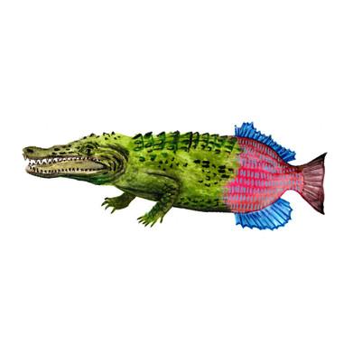 Crocoeixe