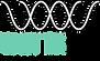 Watts Lab_Logo BG Trasparente_v9.png