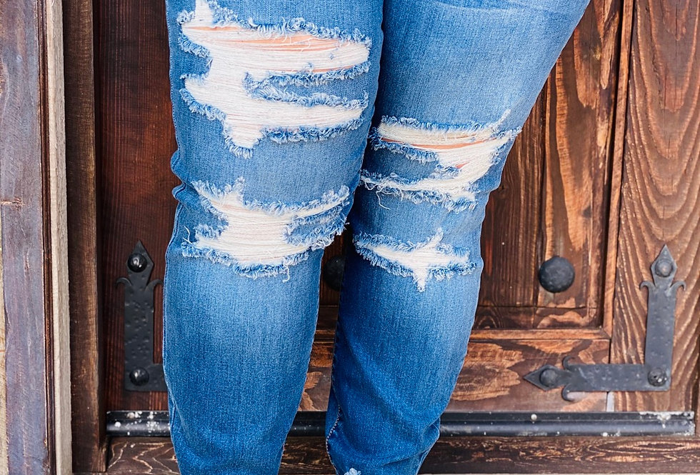 Camron Distressed Skinnies CURVY