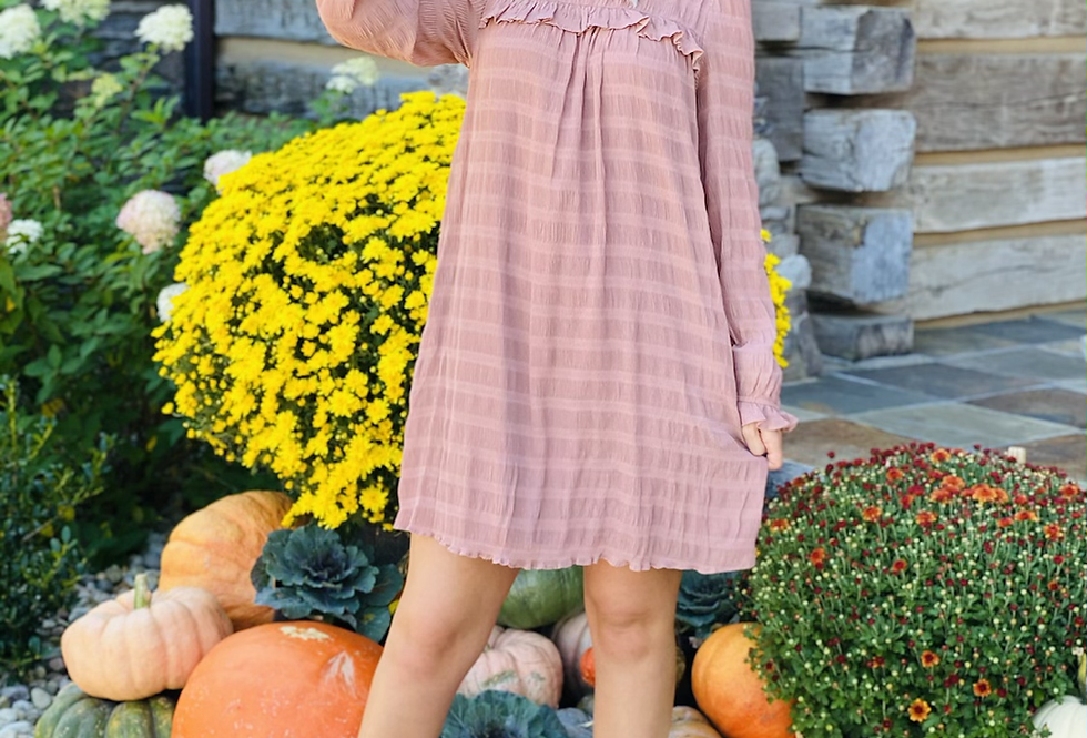 Frilled To Meet You Dress in Pink
