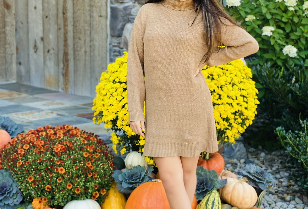 Cover The Basics Sweater Dress