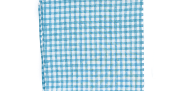 Gigi & Max Blue Gingham Swaddle