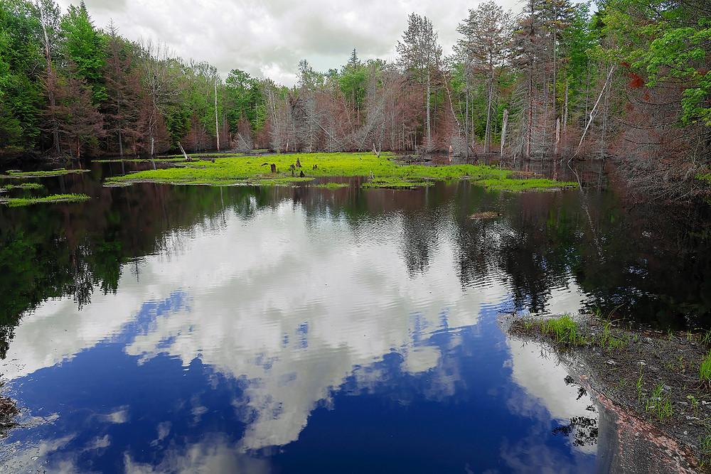 New York: Adirondack Mountains on 22 June 2020