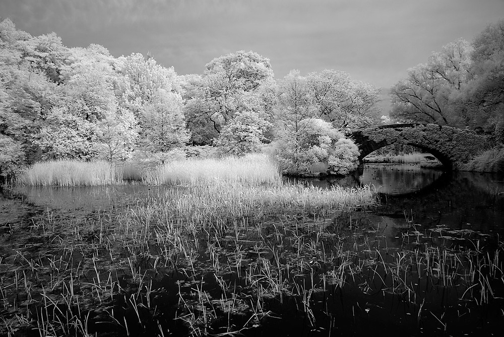 Gapstow Bridge at 59th street Pond (Central Park) in June 2009 - Black-and-white Infra-red image