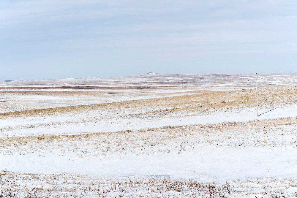 South Dakota: Ft. Pierre National Grasslands: habitat of Golden Eagles, Rough-legged Hawks and others in early February 2020